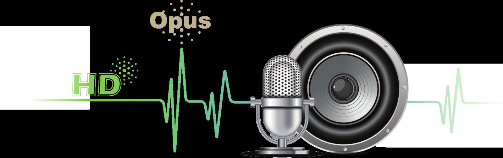 Yealink T41S con codec Opus y sonido HD - Avanzada 7