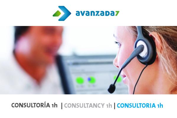 Imagen 1: Servicio de consultoría (1 hora)