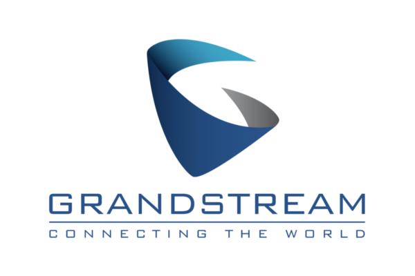 Imagen 1: Grandstream llavero RFID