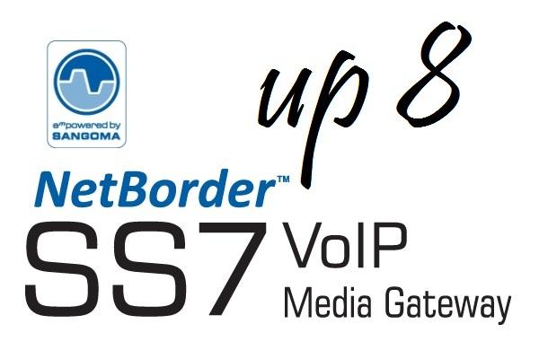 Imagen 1: Sangoma Netborder SS7 Media Gateway Licencia 8E1/T1